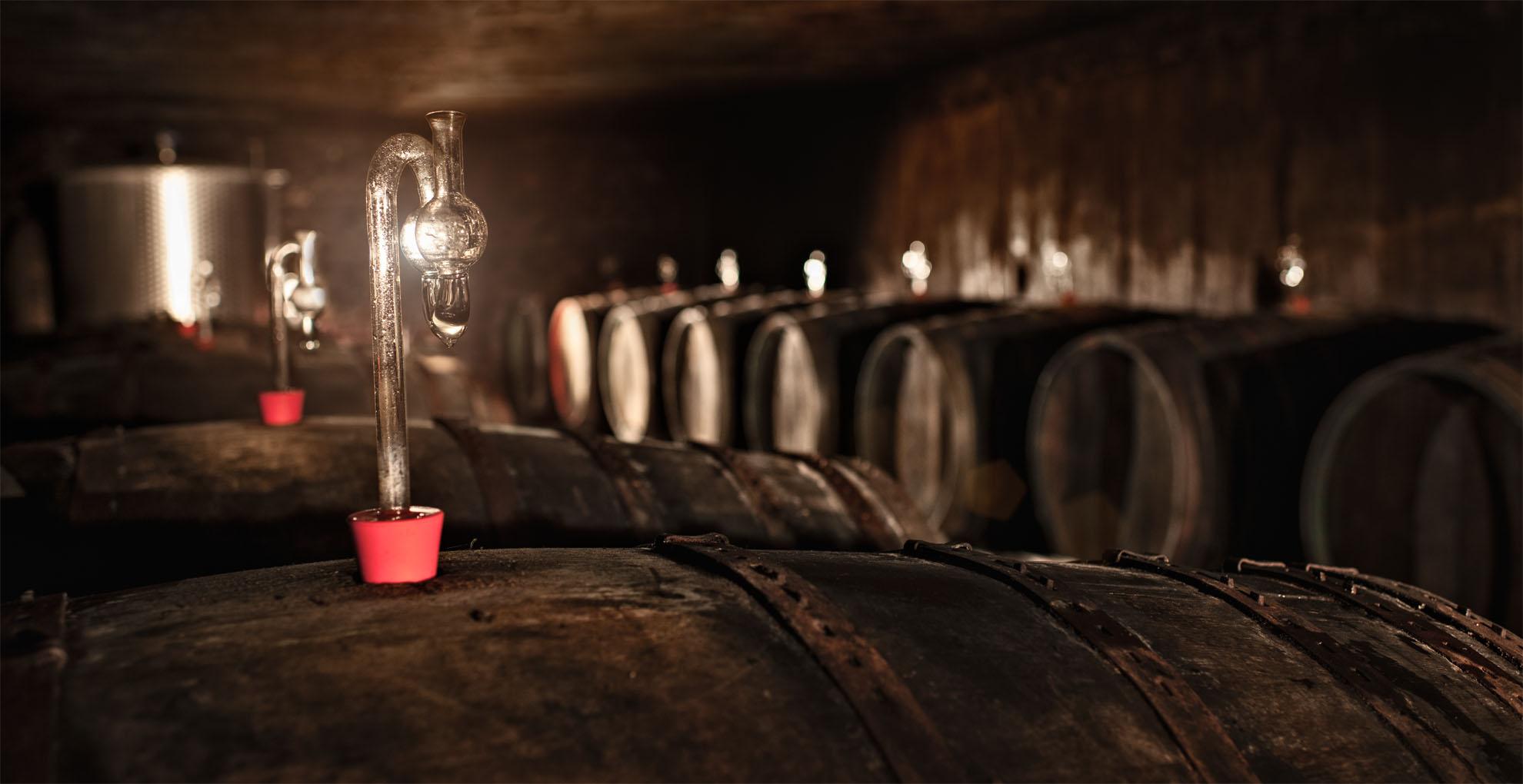 Weingut Böcking Weinkeller